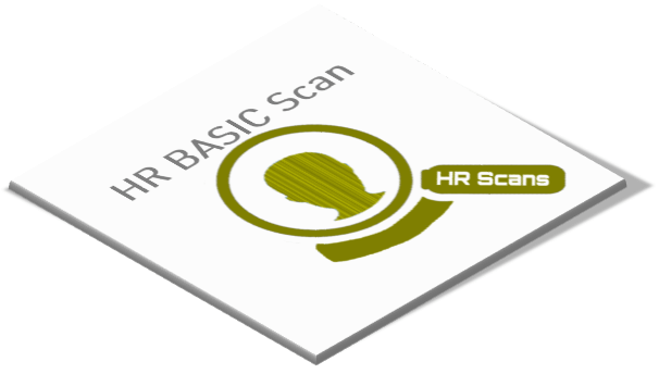 HR basic scan, basic scan hrm, hr basicscan, basis scan hr, hr scan,hrm scan, hr scans, hr werkgeverscan,hr ondernemersscan,hr personeelsscan, hr mkb scan,hr basicscan,