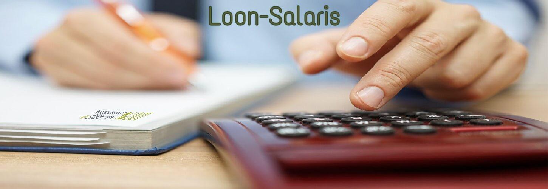 loon, salaris, loonstrook, salarisverwerking, loonadministratie, loonverwerker,salarisverwerker, uitbesteden salarisverwerking,