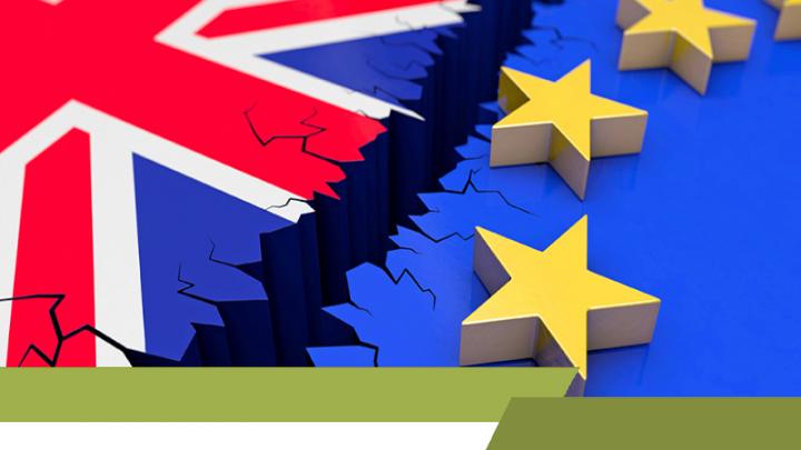 Brexit, Europese Unie (EU): de Brexit, gevolgen brexit werkgevers werknemers, de Europese Unie (EU) vs het Verenigd Koninkrijk (Engeland, Schotland, Wales en Noord-Ierland), de rechten van de Britten en burgers van de EU, het Verenigd Koninkrijk zich terugtrekt uit de EU
