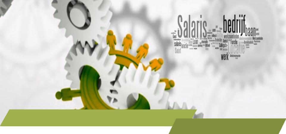 loon, salaris, inkomen,verdienste, werk na inkomen, lonen, salarissen, verloning, loonadministratie,salarisadministratie, loonverwerking, salarisverwerking, salarisverwerker, loonverwerker,