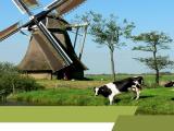 merknamen Nederland, merk nederland, merk NL, status merk sterk, AAA+-status,