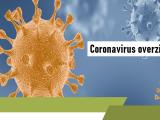 coronavirus overzicht, corona, coronacrisis overzicht,corona-maatregel, Noodmaatregel Overbrugging voor Werkbehoud (NOW), corona maatregelen overzicht, COVID-19 nieuws, corona actueel, coronacrisis nieuws, coronavirus nieuws, corona maatregelen nieuws, corona-epidemie nieuws,